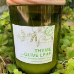 Paddywax Eco Green Candle- Thyme & Olive Leaf